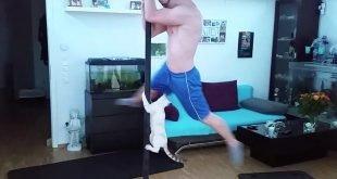 Bengal Cat Pole Dancing