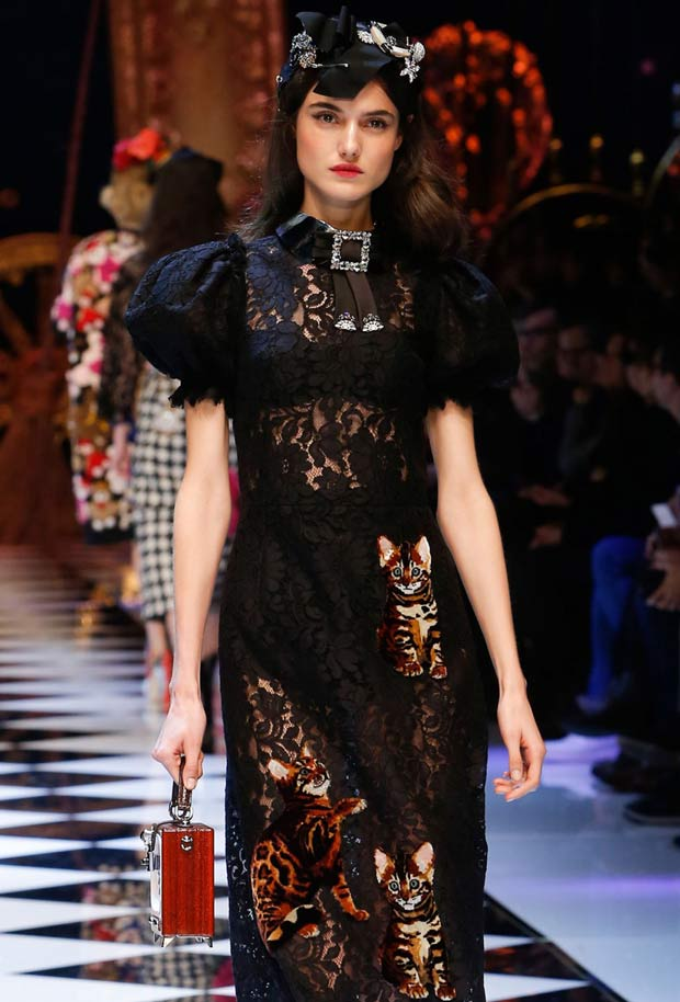 Dolce & Gabbana dress covered in Bengal kitten appliqués