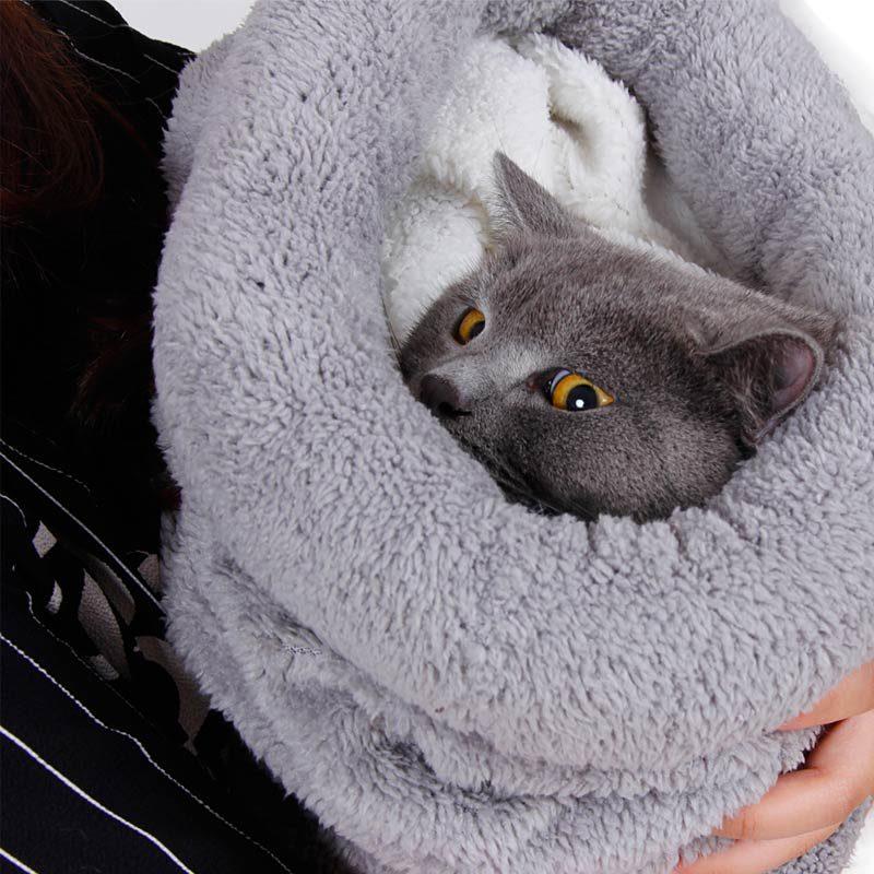Kitty in a sleeping bag