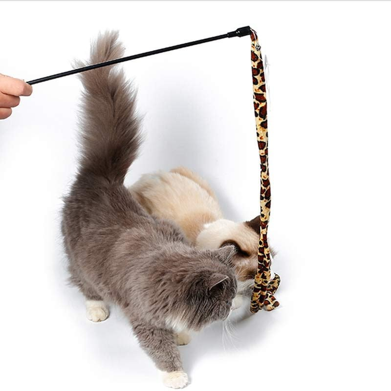 Cats playing with teaser wand toy