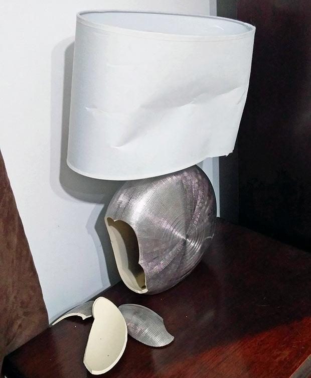 Cats broke the lamp